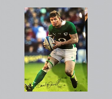 Brian O Driscoll Ireland Rugby Photo